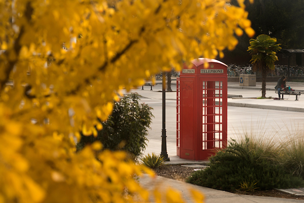Red telephone booth next to light pole with yellow leaves in upper left corner